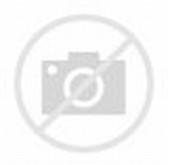 Funny Computer Attack GIF