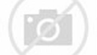 Artikel Tentang Download Gambar Boneka Marsha | CA House Keeping