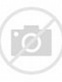 Tiger Boys Underwear