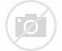 Gambar Buah Coklat