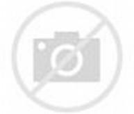 Sterling Silver Indian Earrings