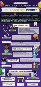 12 Jobs For Neuroscience Majors