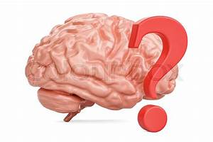 Human Brain With Question Mark  3d Rendering Isolated On
