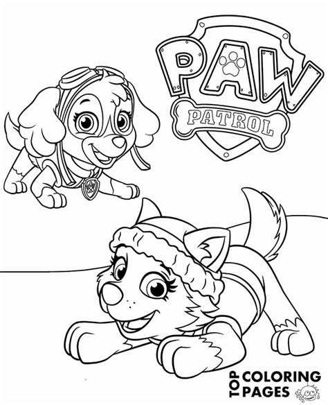 32 Paw Patrol Skye Coloring Page (With images) Paw