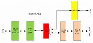 Callite   100ge  Otn Transponder  With Aes