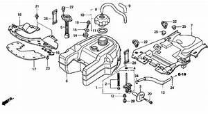 33 Honda Rancher 350 Parts Diagram