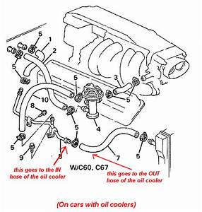 Where Do The Oil Cooler Lines On A 88 U0026 39  Gta Go