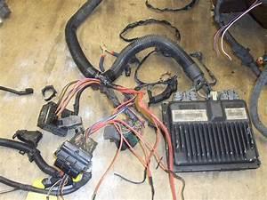 4 3 Vortec Spider Injector Plug Wiring Diagram