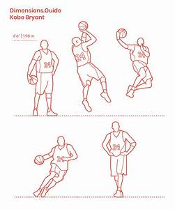 Badminton Racket Dimensions  U0026 Drawings