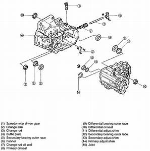2002 Kium Sportage Engine Diagram Fuel System