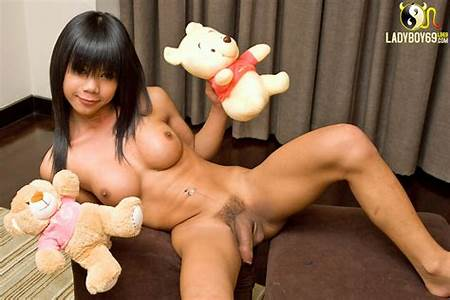 Nude Thai Transexuals Teenage