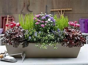 Blumenkästen Bepflanzen Ideen : herbstbepflanzung balkon herbstbepflanzung bepflanzung ~ A.2002-acura-tl-radio.info Haus und Dekorationen