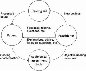 Schematic Diagram Of The Hearing Aid Tuning Process