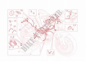 Impianto Elettrico Per Ducati Monster 696 2010   Ducati