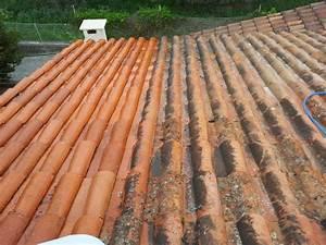 Tarif Nettoyage Toiture Hydrofuge : tarif pour faire nettoyer la toiture de sa maison dans le var piacentino et fils ~ Melissatoandfro.com Idées de Décoration