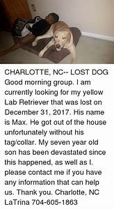 Search lab memes on meme for The dog house charlotte nc
