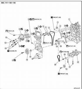 Nissan Rogue Service Manual  Timing Chain
