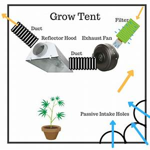 31 Grow Tent Ventilation Diagram