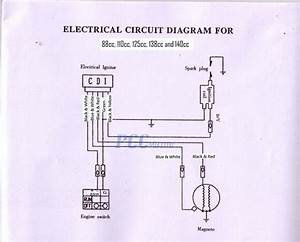 Honda Minimoto Maxii Wiring Diagram