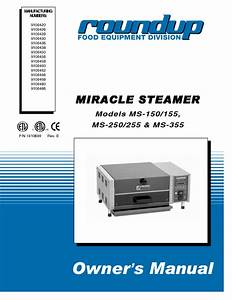 Electric Steamer