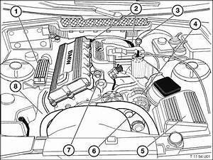 Bmw M42 Engine Technical Information  E36 From 1  1994