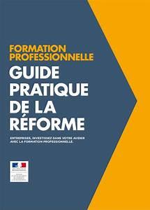 Guide De La Reforme Sur Le Formation Professionnelle   Loi