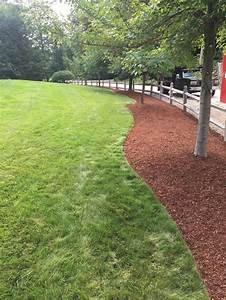 Edging, Mulch, Instillation, And, Hedge, Trimming, Chester, Nh