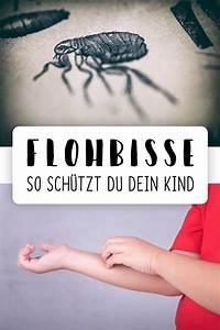Flohbisse Beim Menschen : flohbisse fl he bei menschen bek mpfen floh ~ Watch28wear.com Haus und Dekorationen