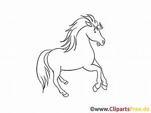 Pferdekopf Schwarz Weiß : pferde zeichnungen ~ Watch28wear.com Haus und Dekorationen