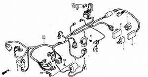 Nsr Salatiga  Nsr 150 Rr Parts Catalogue  Wire Harness