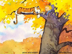 in tree - Calvin & Hobbes Wallpaper (318462) - Fanpop