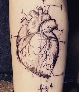 Greys Anatomy Heart Diagram Tattoo