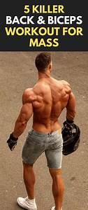 5 Killer Back  U0026 Biceps Workout For Mass  Fitness  Bodybuilding  Gym  Bicepsworkout  Backworkout