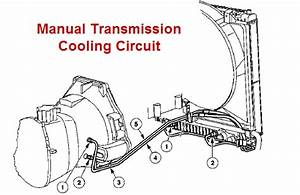 Manual Transmission Cooler Lines  99 F350