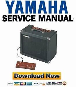 Yamaha Dg60fx