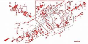 Front Crankcase Cover For Honda Fourtrax Rancher 420 4x4