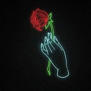 neon roses | Tumblr