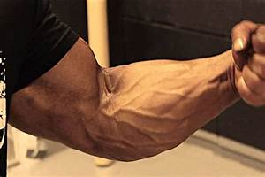 Forearms Workout And Tips