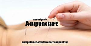 Acupuncture Manual Guide