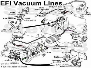 Ford F 150 Vacuum System Diagram