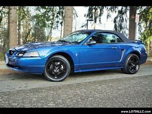 Used 2000 Ford Mustang 5 Speed Manual Convertible New Top Cobra Wheels New Tires for sale