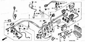Honda Trx 420 Wiring Diagram : honda atv 2008 oem parts diagram for wire harness ~ A.2002-acura-tl-radio.info Haus und Dekorationen