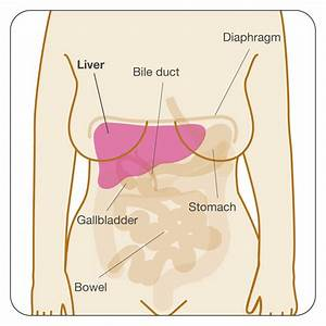 Secondary Breast Cancer In The Liver