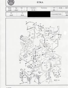 Vr6 Alternator Wiring Diagram
