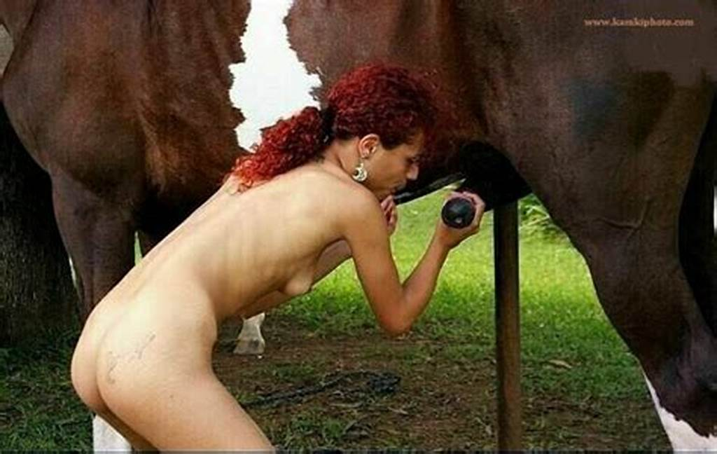 Women Love Horse Cock