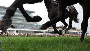 Australian Horse Racing Bans Anabolic Steroid Use