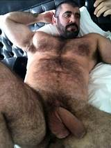 Hairy men big cock
