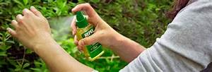 Do  U0026 39 Natural U0026 39  Insect Repellents Work
