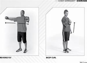 Chest Expander Workout Routine Pdf