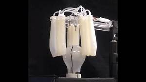 Robotics Degrees This Soft Robotic Gripper Can Screw In Your Light Bulbs